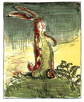 velveteen rabbit